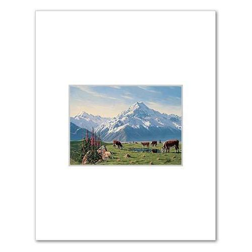 Foxgloves Mt Cook NZ Print 28 x 35 cm-NZ ART-Image Vault ltd (NZ)-The Outpost NZ