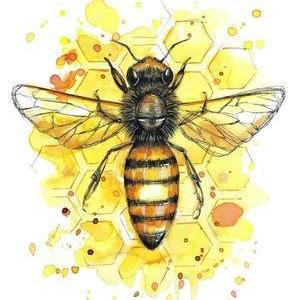 Honey Bee Print-NZ ART-Fiona Clarke (NZ)-The Outpost NZ