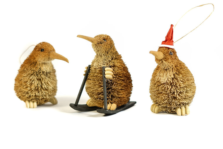 Kiwi Bristle Ornament