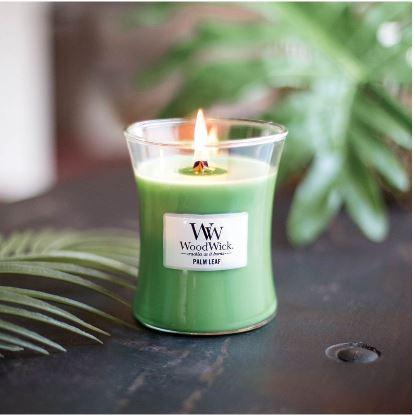 Palm Leaf Soy Candle-NZ CANDLES-Splosh (AUS)-Medium-The Outpost NZ