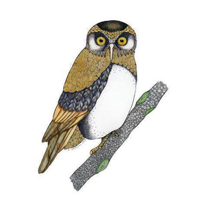 Ruru Morepork Print,NZ ART,The Outpost NZ The Outpost NZ, New Zealand, outpost, Queenstown