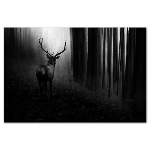 Stag Canvas By Doris Reindl-NZ ART-Image Vault ltd (NZ)-The Outpost NZ