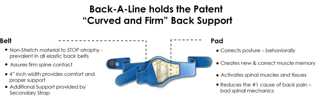 Cutaway view of the Back-A-Line back support with orthopedic lumbar pad