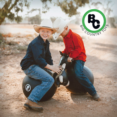 Save $15 Off each Riding Toy*