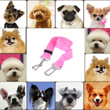 Dog Safety Seat Leash