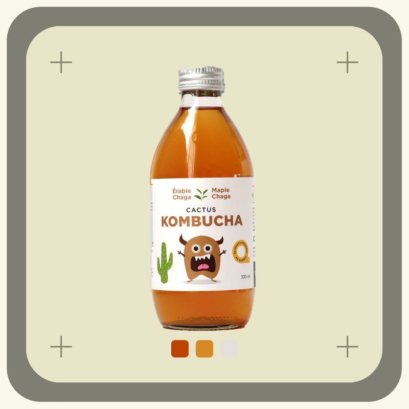 CACTUS KOMBUCHA - 4 FLAVOURS AVAILABLE