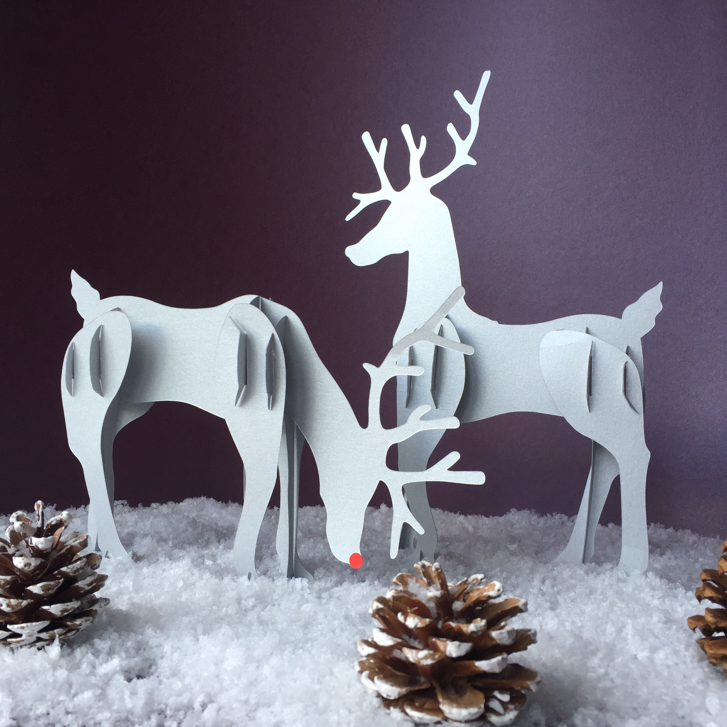 Decorate it Yourself - Rudolf and Friend Reindeer Kit