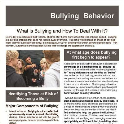 Bullying Behavior