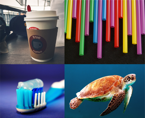 Coffee Cup, straws, toothbrush and a turtle