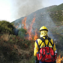 Creating Fire Resilient Forests