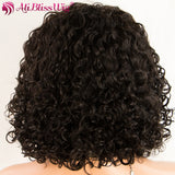 Human Hair Wigs Short Curly Wig Brazilian Remy Hair