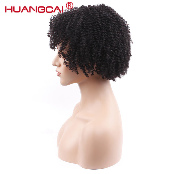 Indian Curly Human Hair Wigs with baby hair