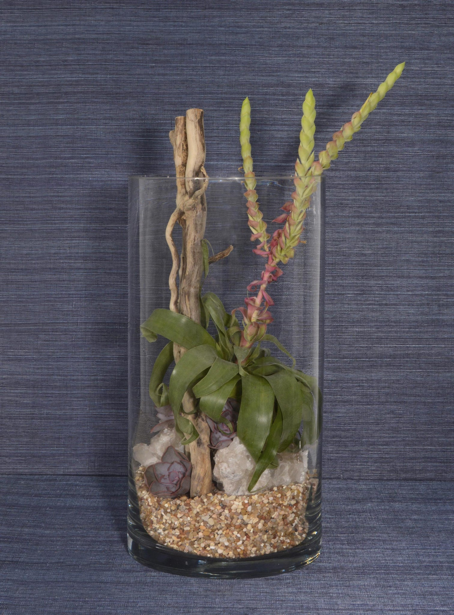 Narrow Terrarium