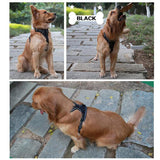 Reflective Padded Dog Harness
