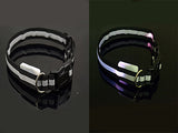 High Visibility LED Dog Collar