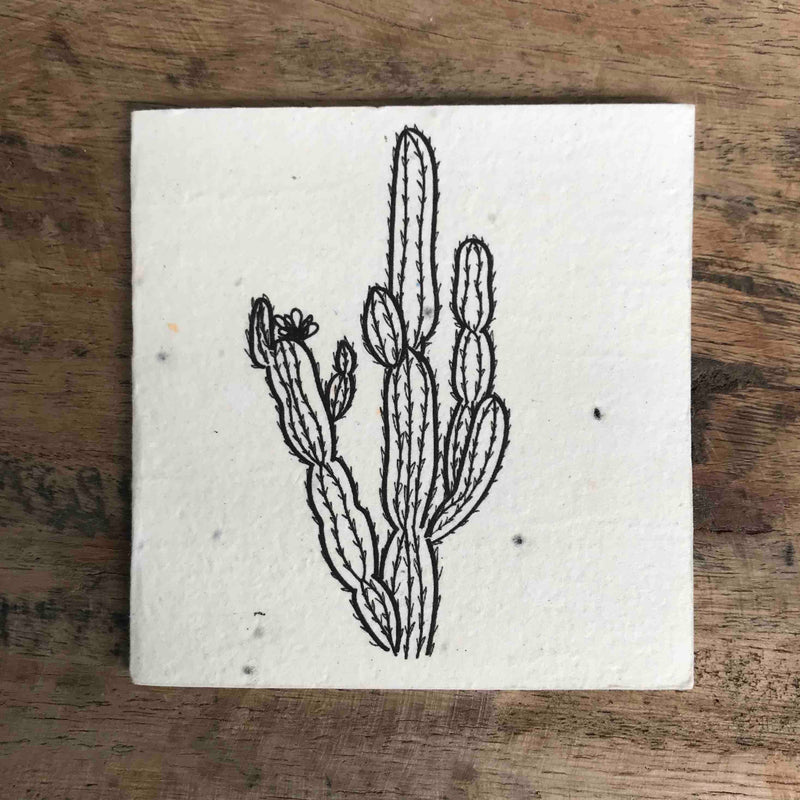 Plantable Card - Cactus Design