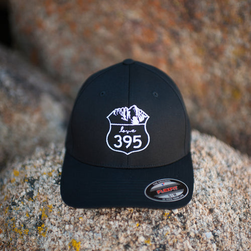 Embroidered Logo Flexfit Hat, Black