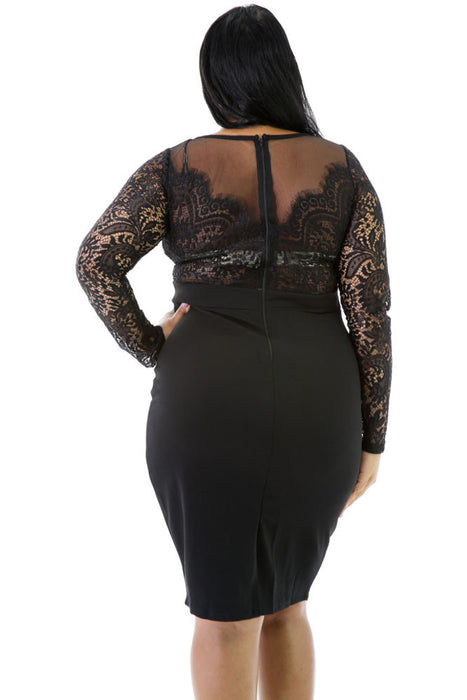 Chicloth Long Sleeve Lace Top Plus Size Dress-Plus size Dresses-Chicloth