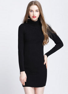 Chicloth Winter Slim Turtleneck Bodycon Women's Sweater Dress