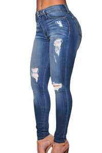Chicloth Denim Destroyed Skinny Jeans