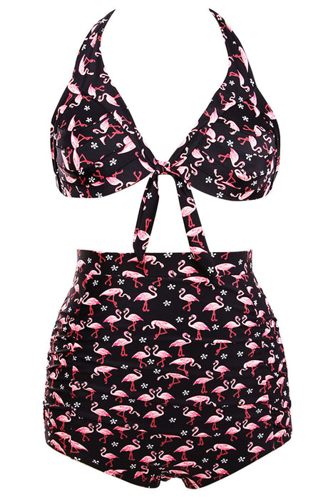 Chicloth Waterfowl Print Black Retro High Waist 2 Pieces Plus Swimsuit-Plus size swimwear-Chicloth