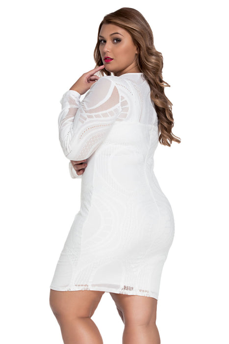 Chicloth White Lace Nude Illusion Long Sleeves Bodycon Dress-Chicloth