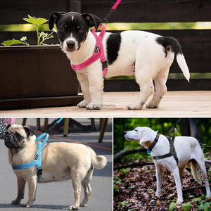 Reflective Dog Harness (Small, Medium, Large Dog) - 4 colours