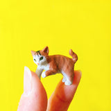 lovely kitty miniature
