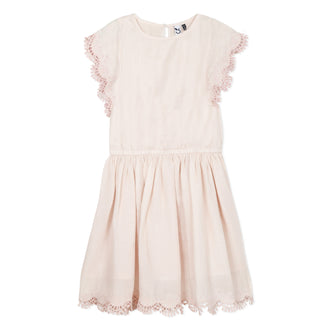 Antique Chic Pink Eyelet Detail Dress