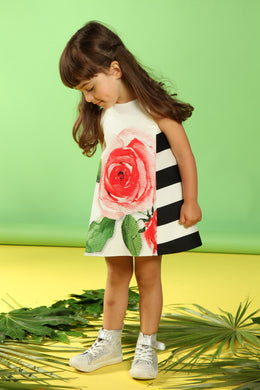 Stripe Rose Print Dress