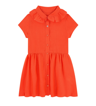 Wizz Burnt Orange Ruffle Collar Dress