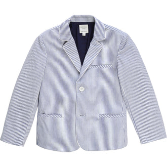 Blue Striped Suit Jacket