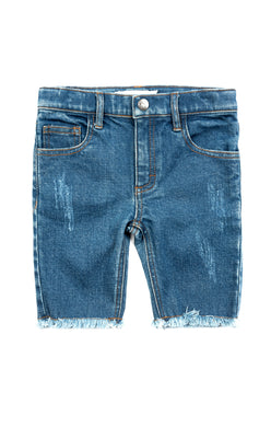 Blue Rainbow Jean Shorts