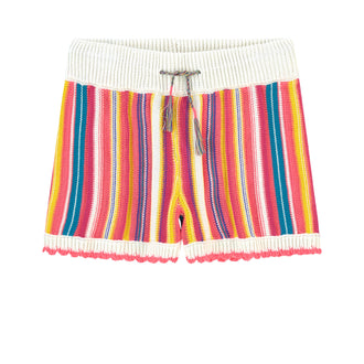 Multicolored Stripe Knit Shorts