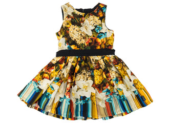 Multi Sasebo Dress