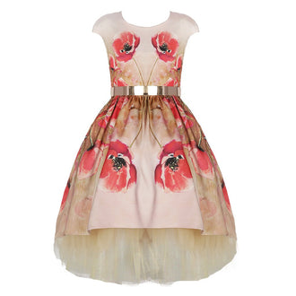 Poppy Print Party Dress