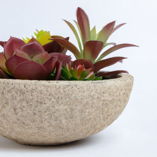 Botanic Faux Plant - Succulents in a decorative concrete pot, Artificial Plant - Home-Buy Interiors