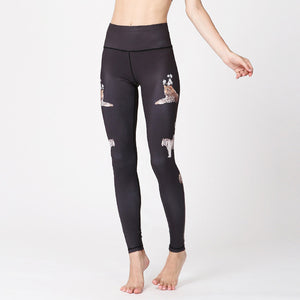 Women Sexy Yoga Pants Fitness Leggings - Sports Fitness Store