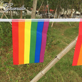 Hanging Rainbow Flag LGBT 14x21cm Polyester 15 Pieces 4M Length Lesbian Gay Pride Printed Home Decorative Flags and Banners