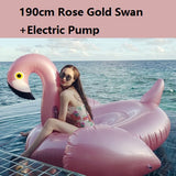Adult Inflatable Floats (Unicorn, Pegasus, Swan, Duck, Flamingo)