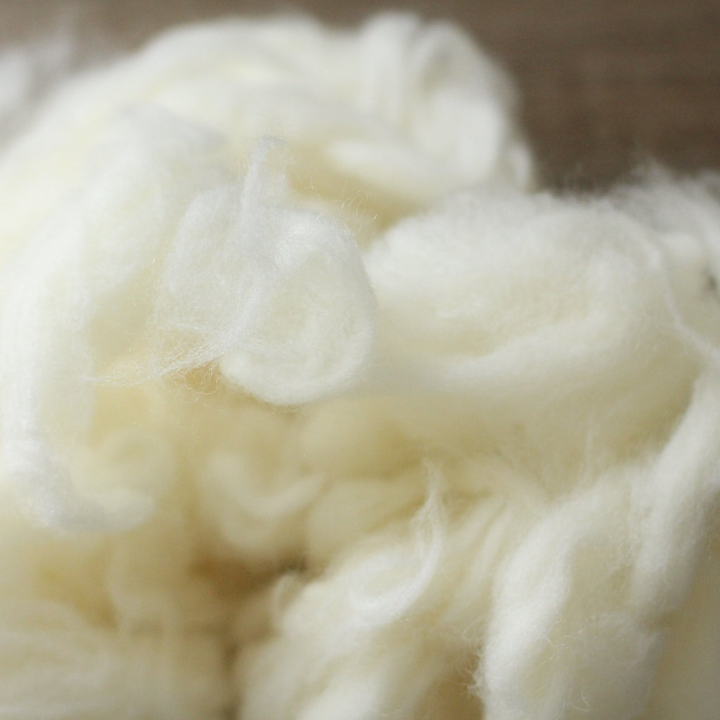 Wool Filling (Stuffing)