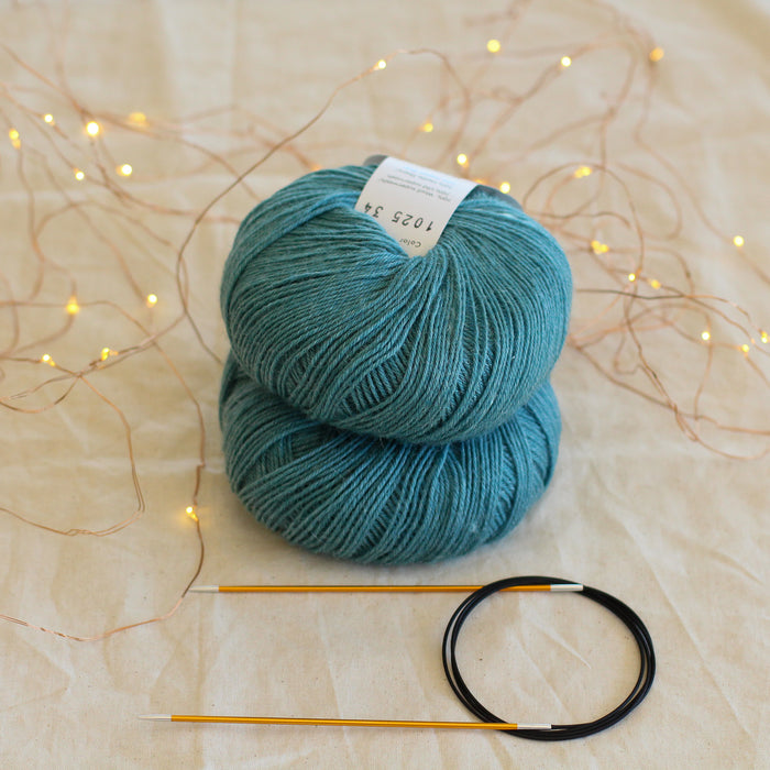 Beginner's Sock Knitting Kit | Level 1