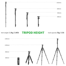 Zecti Camera Tripod 16 to 63 Inch Lightweight Aluminum Tripod Monopod with Ball Head and Carry Bag, Load Capacity 6kg