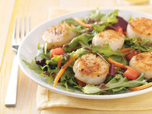 Wild Catch US Scallops | Special Scallop Salad