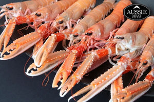 Ocean Catch Premium Australian Scampi  (5-7 Pieces/Pack, 500g) | Meat and Seafood Delivery