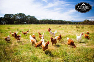 Australian Free Range Chicken Drumsticks | Meat and Seafood Delivery Hong Kong