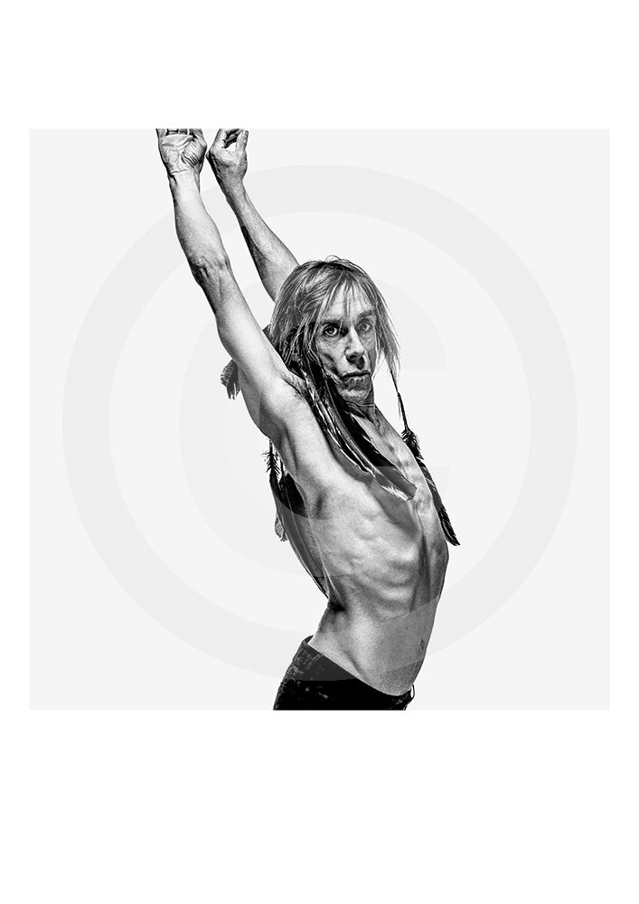 Iconic image of music legend Iggy Pop by portrait photographer Gavin Evans taken in Manhattan, 1998. Limited Edition print signed by the photographer.