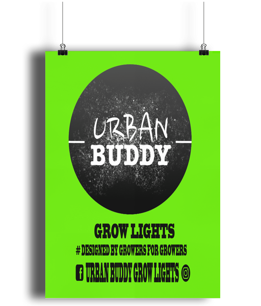 Urban Buddy A4 Poster