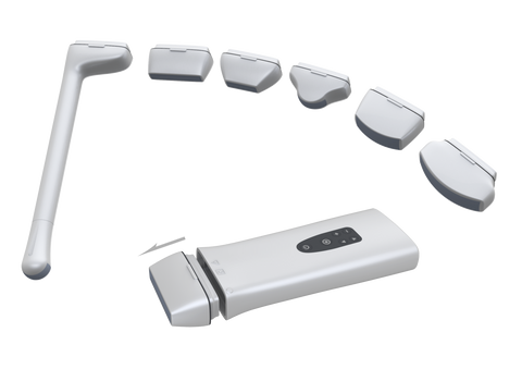 B/W Pocket Ultrasound System With Changeable Probe Heads: Linear, Convex, Micro Convex, Vaginal