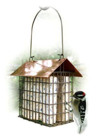 Coppertop Double Suet Cage
